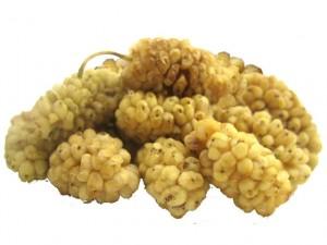 Valeur nutritive des Mûres blanches (Mulberries)